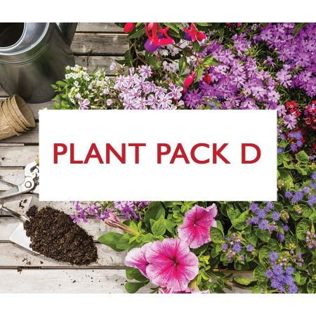 Plant Pack D - Mixture of Acid Soil Loving Plants for Shade