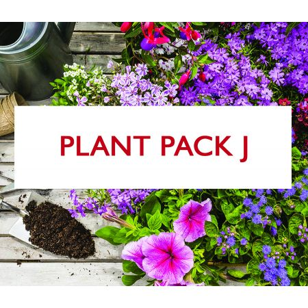 Plant Pack J - Mixed Herbaceous Pack