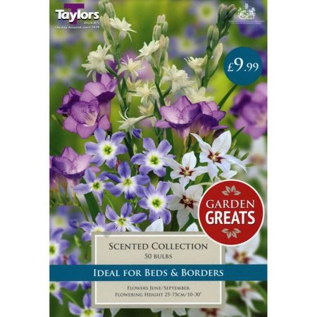 Taylors Bulbs Scented Collection (Garden Greats Collection)